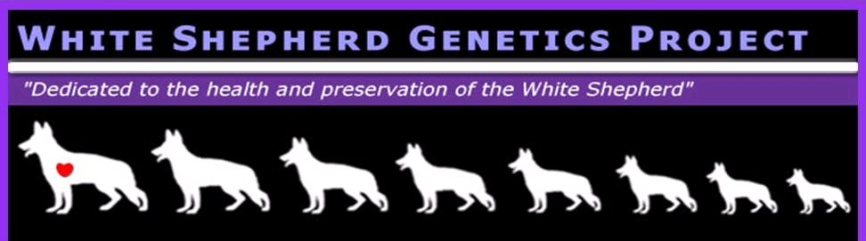 White Shepherd Genetics Project