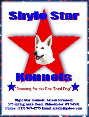 White Shepherds, Shylo Star Kennels, Rhinelander WI,  Service Dog, CGC Evaluator