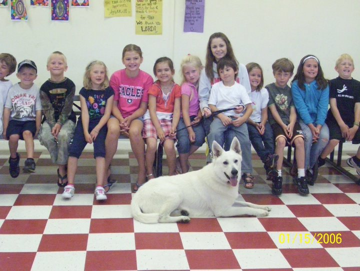 Max therapy dog, Max, White Shepherds, Shylo Star Kennels, Rhinelander WI,  Service Dog, CGC Evaluator