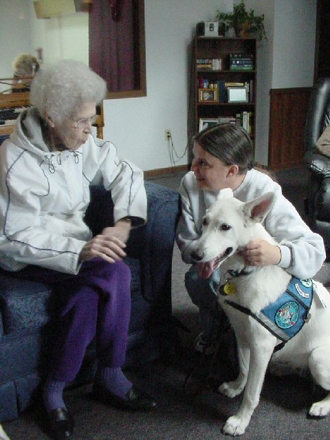 Shira therapy work, White Shepherd Shira, Shylo Star Kennels, Rhinelander WI,  Service Dog, CGC Evaluator